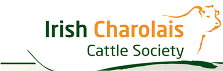 Irish Charolais Cattle Society